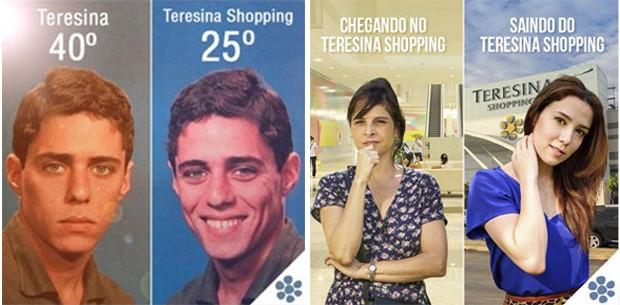 the-shopp